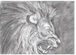 lioncolére