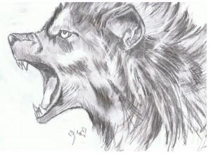 loupcolère